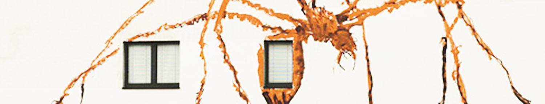 website-design-richmond-virginia