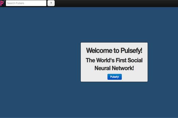 website-design-richmond-virginia-pulse